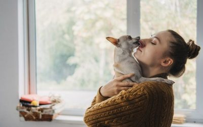 October is Adopt-A-Dog Month: DO THIS When Adopting a New Dog